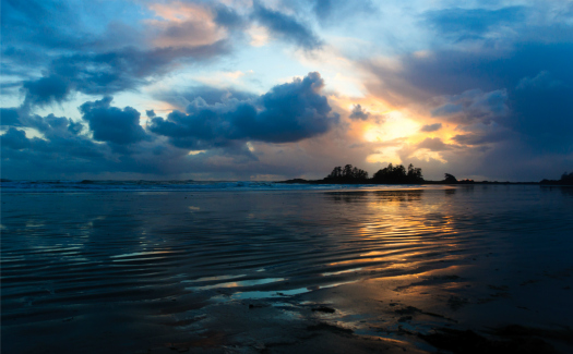 Chesterman Beach (Image: colink used under a Creative Commons Attribution-ShareAlike license)