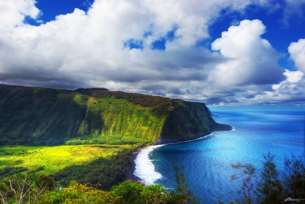 Destinations to make a difference: wildlife in Hawaii