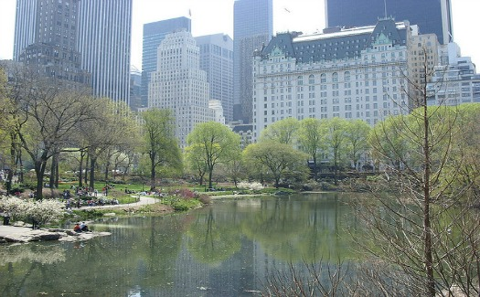 How to do New York in a weekend