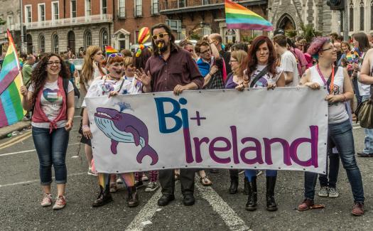 William Murphy, DUBLIN 2015 LGBTQ PRIDE PARADE REF-105951 via Flickr CC BY-SA 2.0