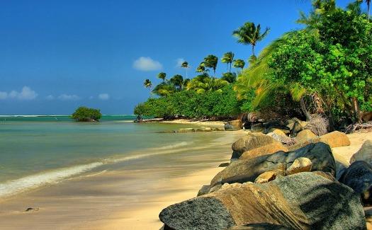 Ron Reiring, Puerto Rican beach, via Flickr (CC BY 2.0)