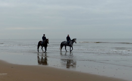 Roman Boed, Riders on the beach, via Flickr (CC by 2.0)