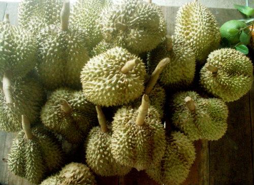 Durians (Image: Ringo Ichigo)