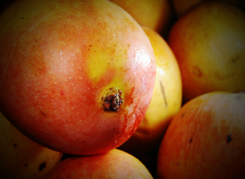 Mangos (Image: Wee Keat Chin)