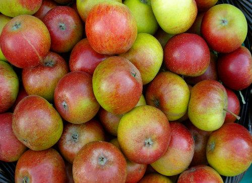 Apples (Image: net_efekt)